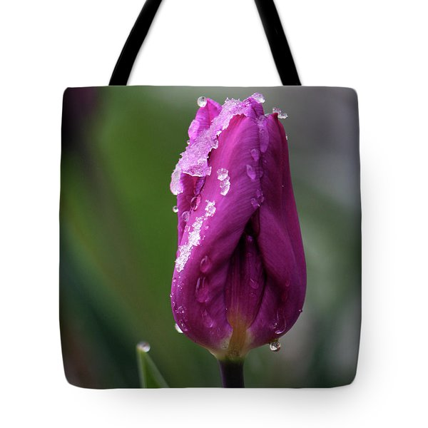 Tote Bag featuring the photograph Spring Coat by Silke Brubaker