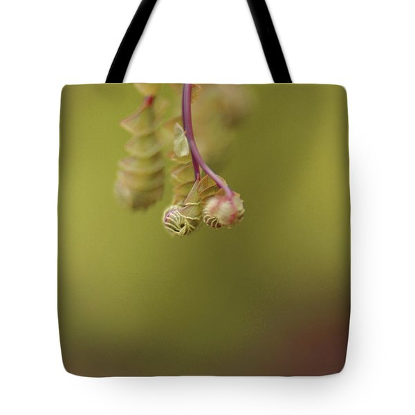 Tote Bag featuring the photograph Spring Coming 2017 by Jeff Burgess