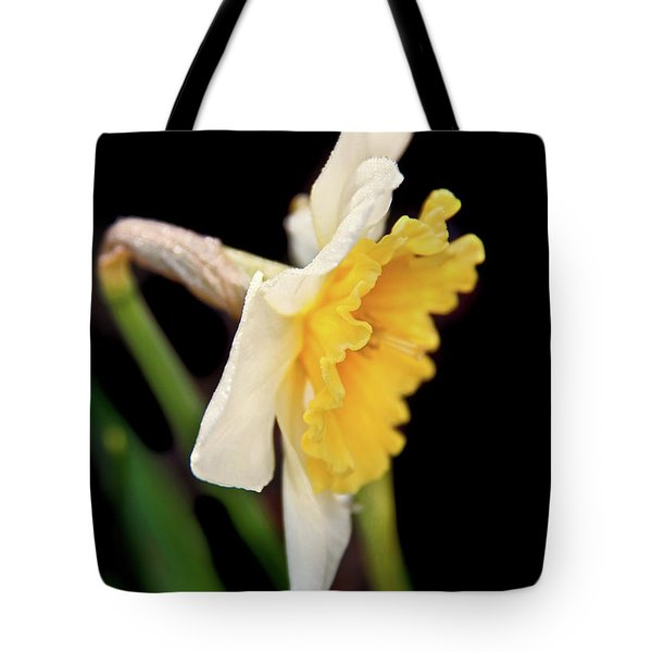Tote Bag featuring the photograph Spring Daffodil Flower by Jennie Marie Schell