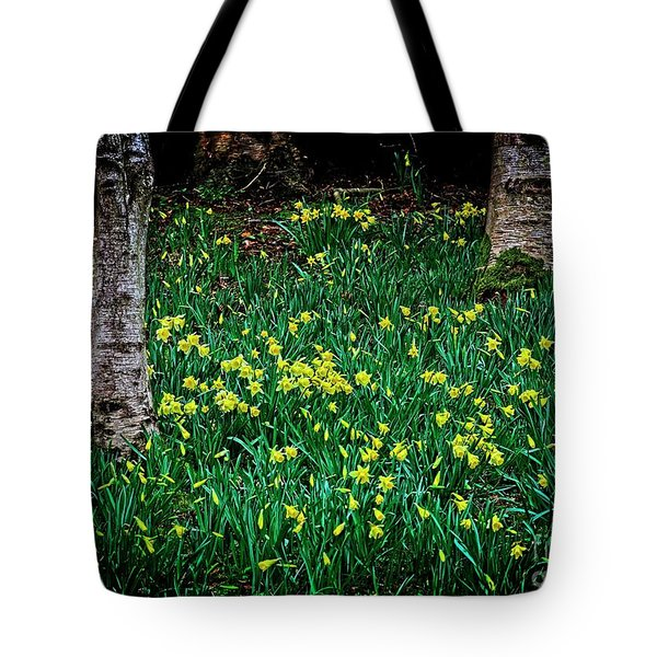 Spring Daffoldils Tote Bag
