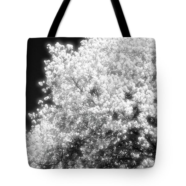 Spring Day In Barrie Ontario Canada 2017-05-15 Two  Tote Bag by Lyle Crump
