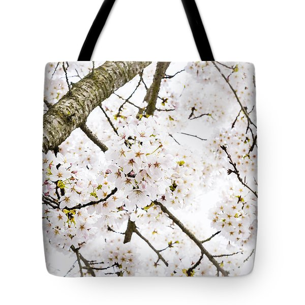 Spring Dogwood Blossoms Tote Bag