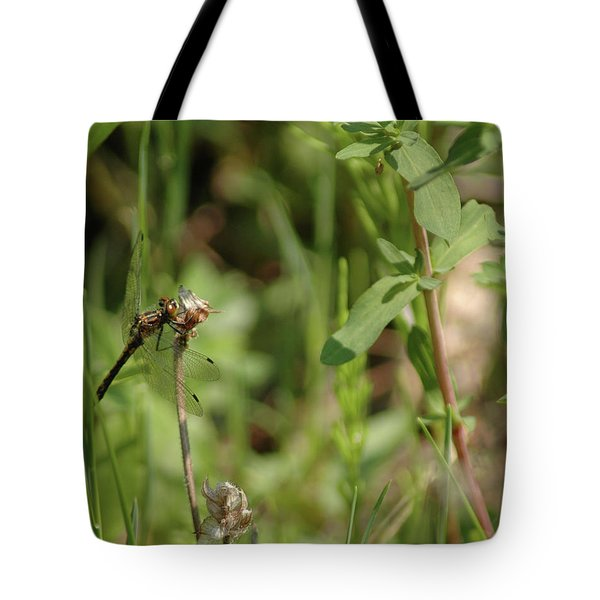 Tote Bag featuring the photograph Spring Dragonfly by LeeAnn McLaneGoetz McLaneGoetzStudioLLCcom