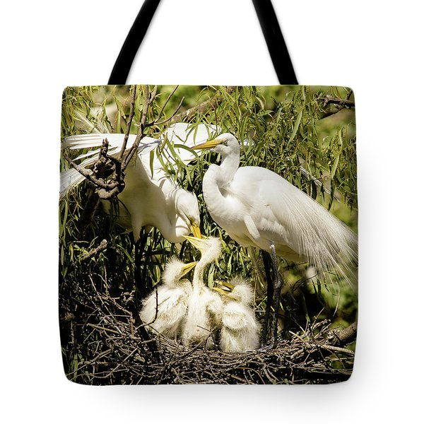 Tote Bag featuring the photograph Spring Egret Chicks by Robert Frederick