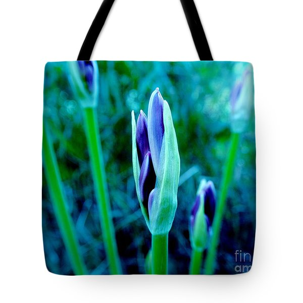 Tote Bag featuring the photograph Spring Erupting Early by Marsha Heiken