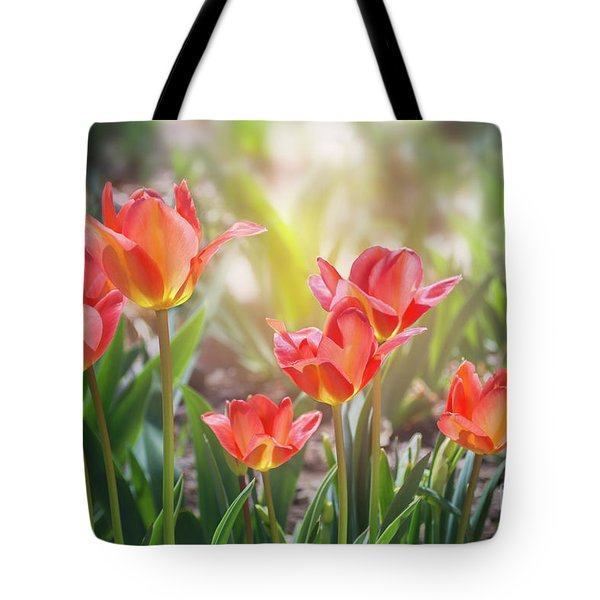 Spring Favorites Tote Bag