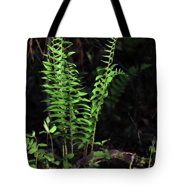 Tote Bag featuring the photograph Spring Ferns by Skip Willits