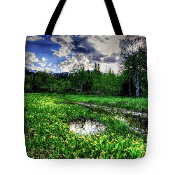 Tote Bag featuring the photograph Spring Flowers by Bryan Carter