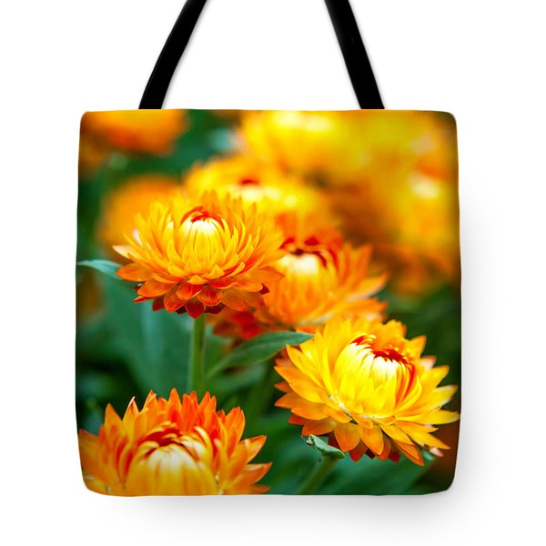 Spring Flowers In The Afternoon Tote Bag