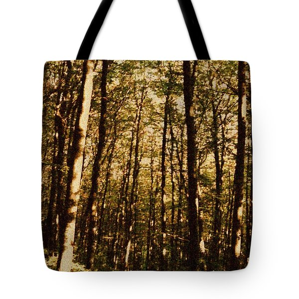 Tote Bag featuring the photograph Spring Forest by Jean Bernard Roussilhe