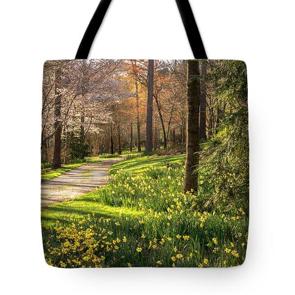 Spring Garden Path Tote Bag