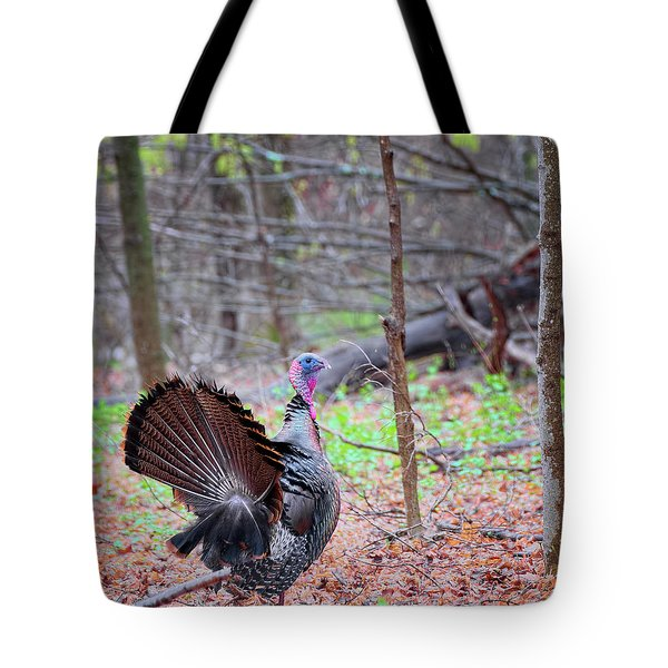 Tote Bag featuring the photograph Spring Gobbler Square by Bill Wakeley