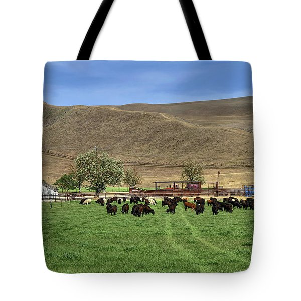 Tote Bag featuring the photograph Spring Grazing by Donna Kennedy