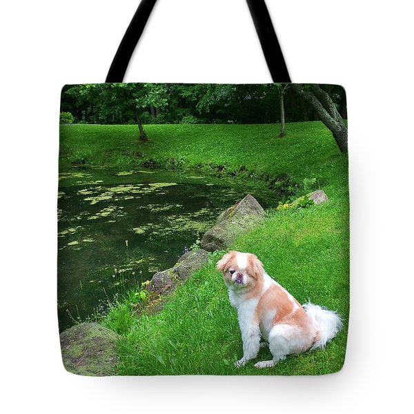 Tote Bag featuring the photograph Spring Green Japanese Chin by Roger Bester