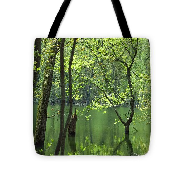 Spring Green  Tote Bag by Lori Frisch