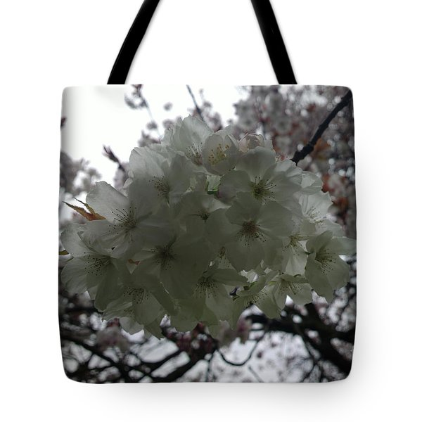 Spring Tote Bag by Hanza Turgul