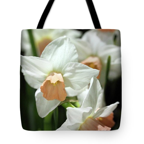 Spring Has Spring Tote Bag by Mary Haber
