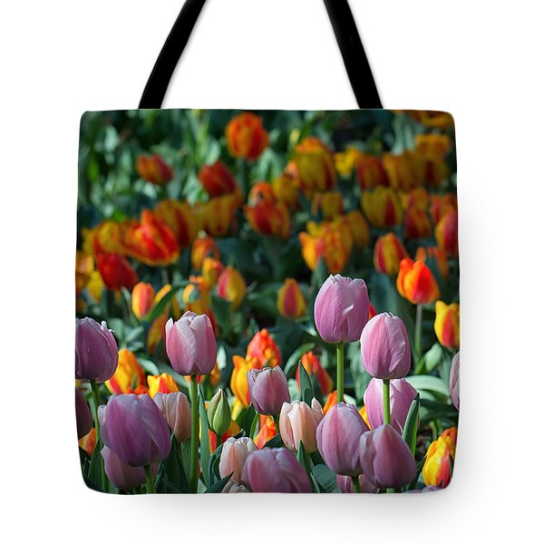 Spring Has Sprung Tote Bag