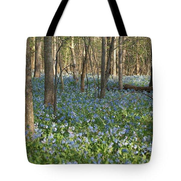 Spring Tote Bag by Heidi Poulin
