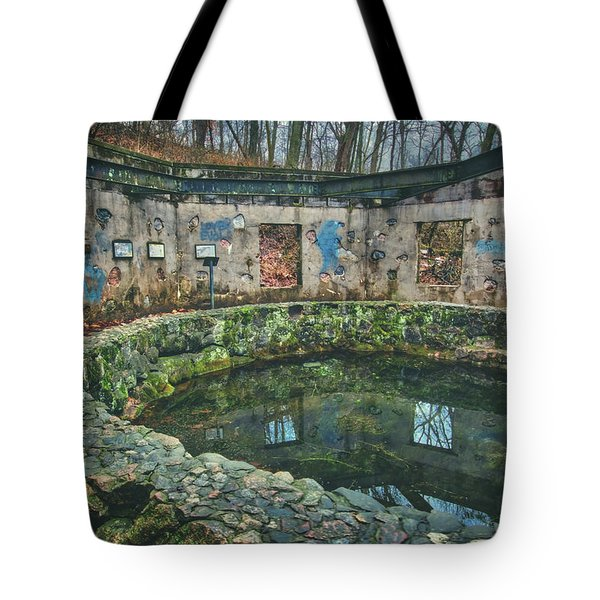 Tote Bag featuring the photograph Spring House 2 - Paradise Springs - Kettle Moraine State Forest by Jennifer Rondinelli Reilly - Fine Art Photography