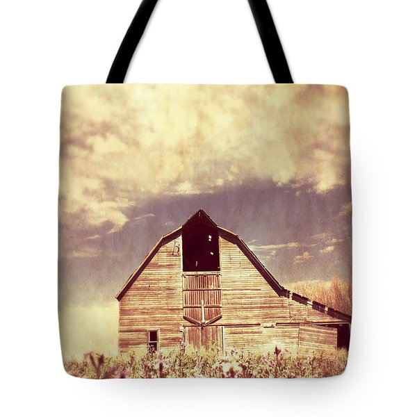 Tote Bag featuring the photograph Spring In Kansas  by Julie Hamilton