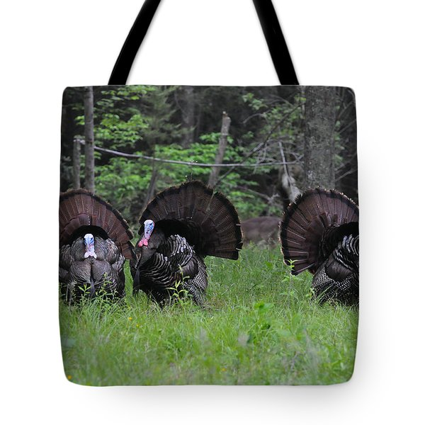 Spring In The Air Tote Bag by Todd Hostetter