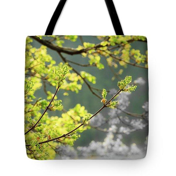 Spring In The Arboretum Tote Bag