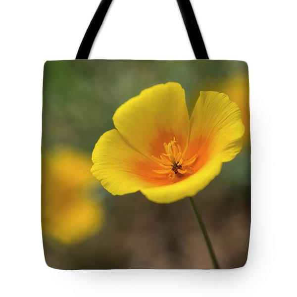 Tote Bag featuring the photograph Spring Is Beckoning  by Saija Lehtonen