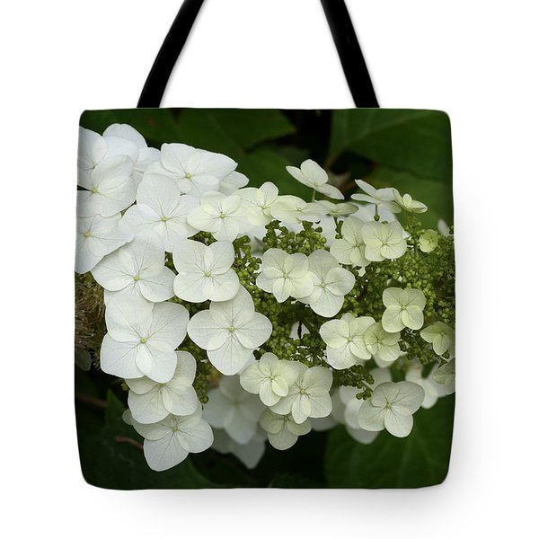 Spring Is Busting Out All Over Tote Bag