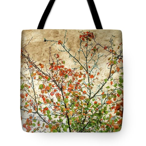 Spring Is Gone Tote Bag