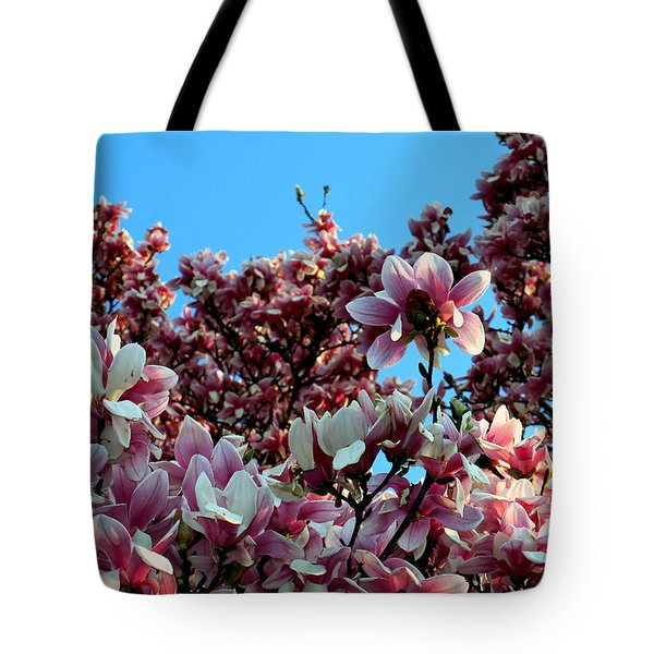 Tote Bag featuring the photograph Spring Is Here by Dorin Adrian Berbier