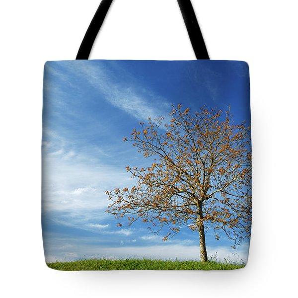 Spring Landscapes Tote Bag