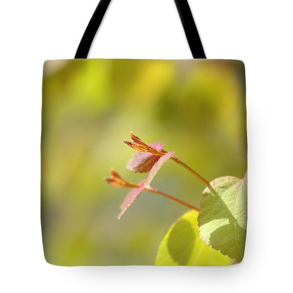 Tote Bag featuring the photograph Spring Macro2 by Jeff Burgess
