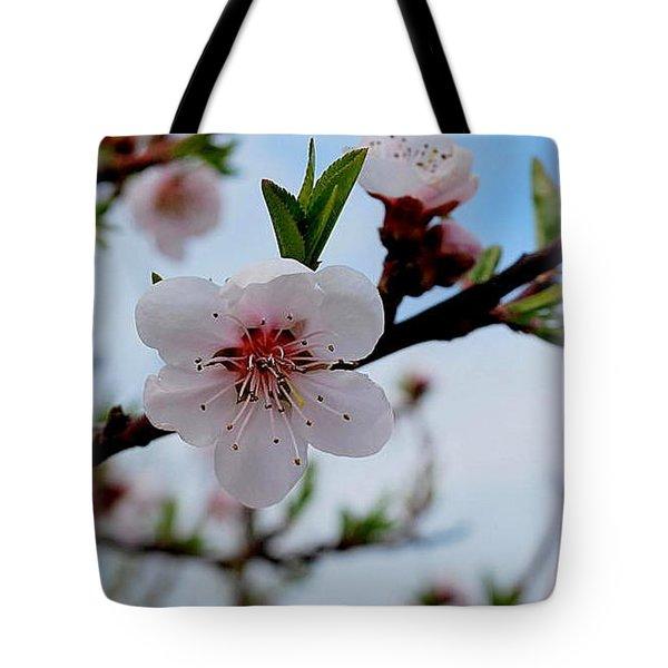Tote Bag featuring the photograph Spring by Marija Djedovic