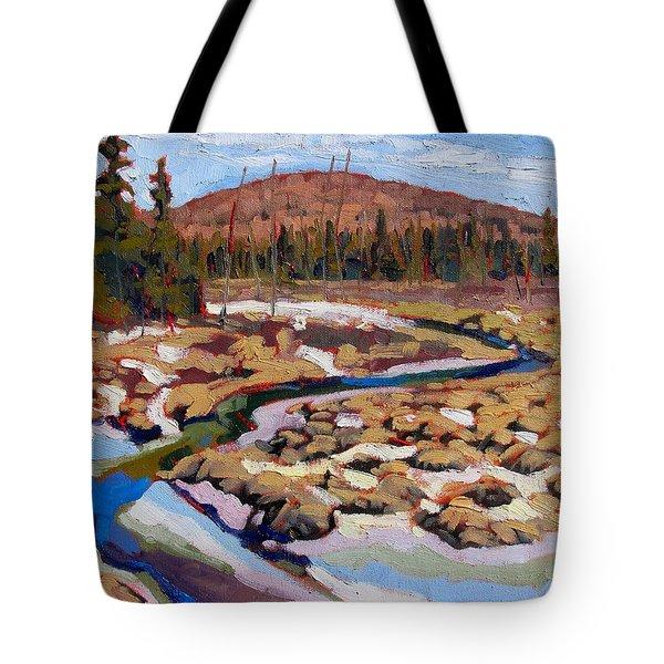 Spring Marsh Algonquin Tote Bag
