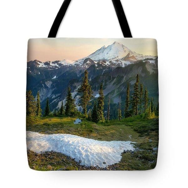 Spring Melt Tote Bag by Ryan Manuel