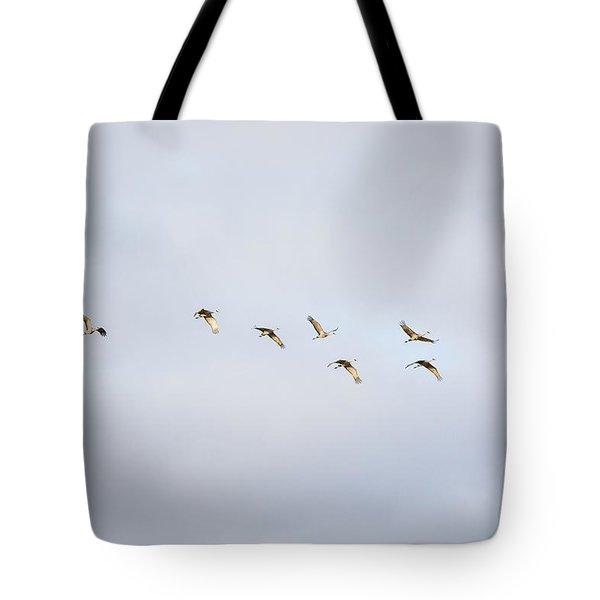 Spring Migration 2 Tote Bag