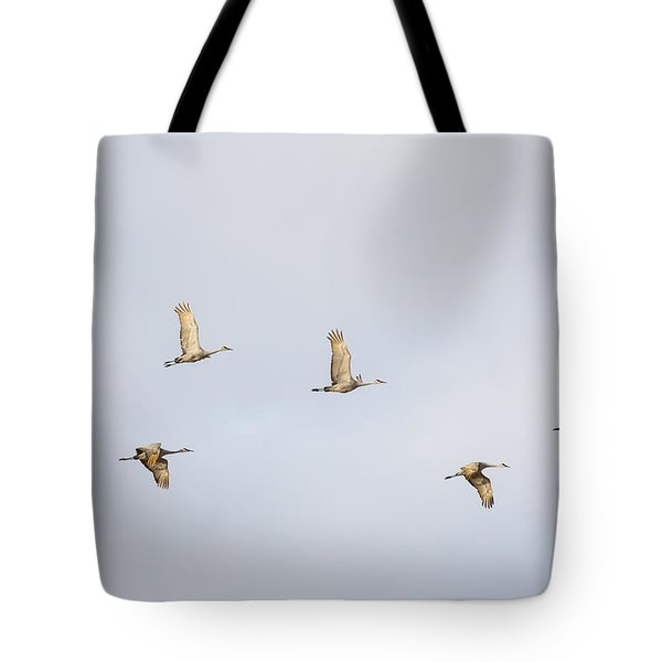Spring Migration 3 Tote Bag
