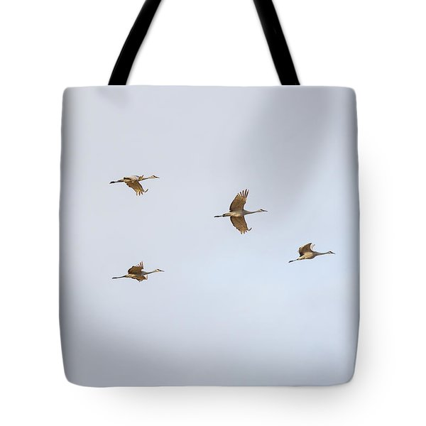 Spring Migration 4 Tote Bag