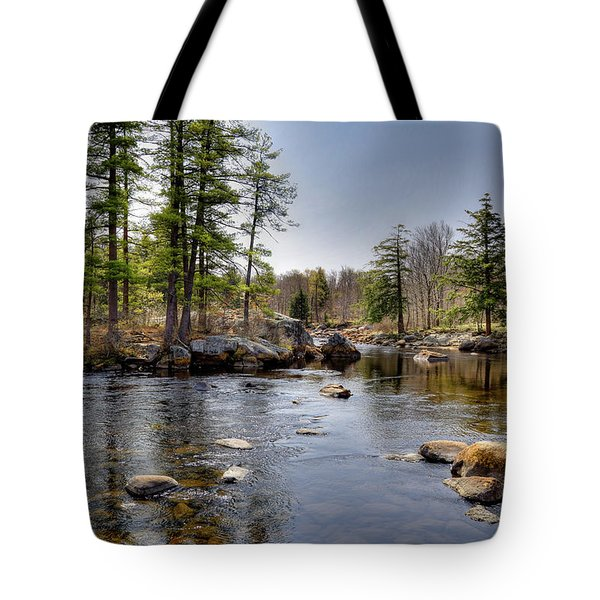 Tote Bag featuring the photograph Spring Near Moose River Road by David Patterson