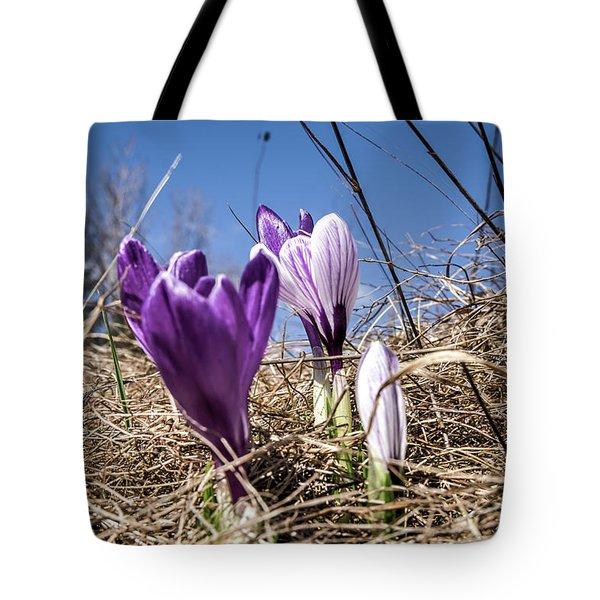 Spring On Bule Tote Bag