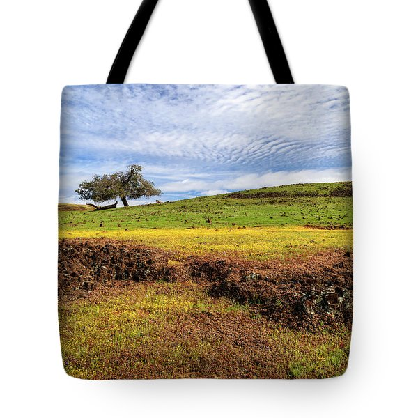 Tote Bag featuring the photograph Spring On North Table Mountain by James Eddy