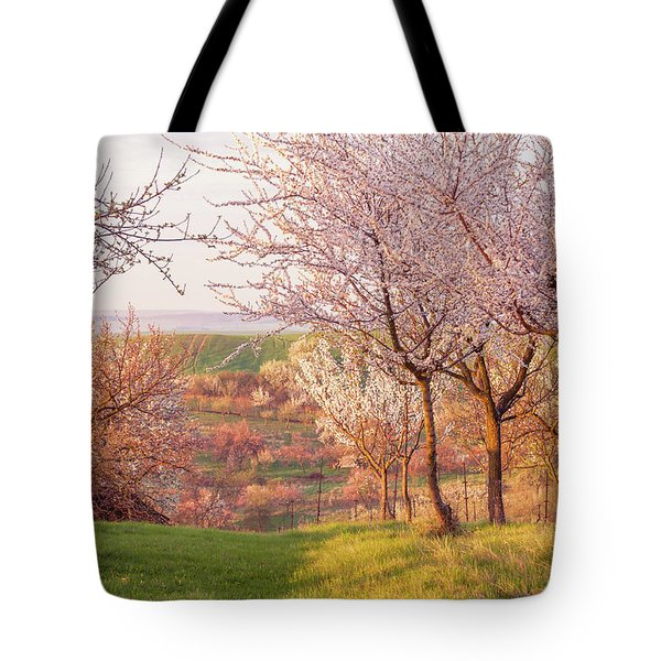 Tote Bag featuring the photograph Spring Orchard With Morring Sun by Jenny Rainbow