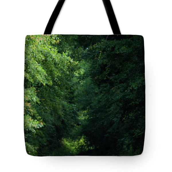 Tote Bag featuring the photograph Spring Path Of Light by Shelby Young
