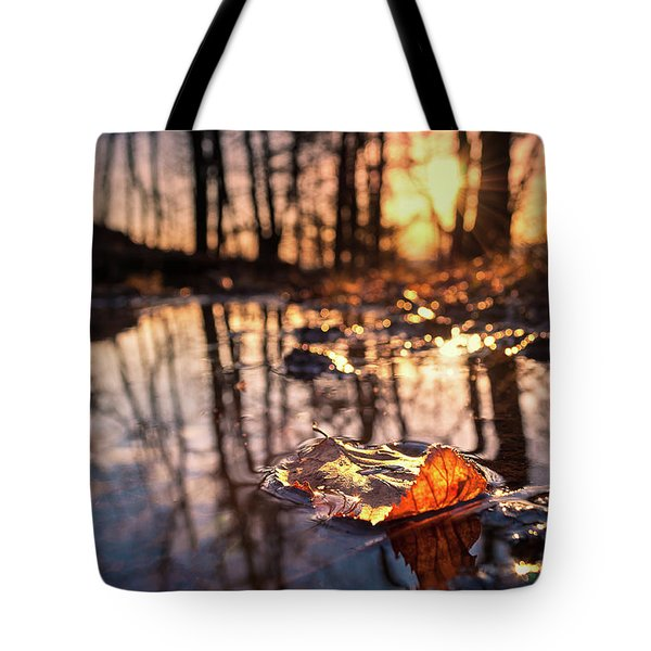 Spring Puddles Tote Bag