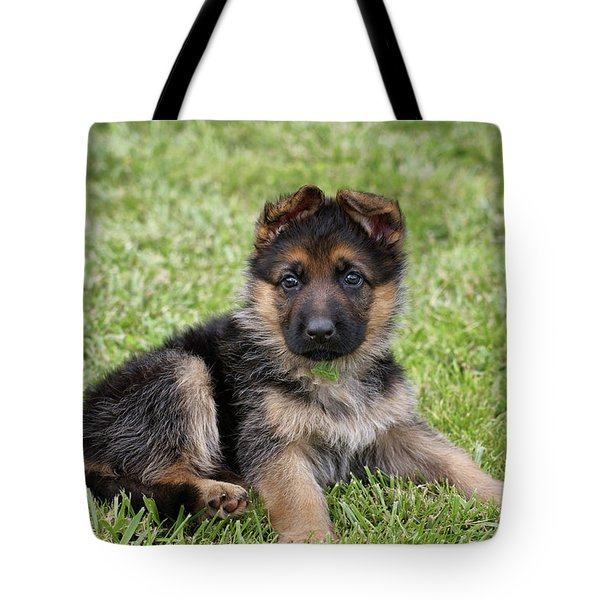 Spring Puppy Tote Bag by Sandy Keeton