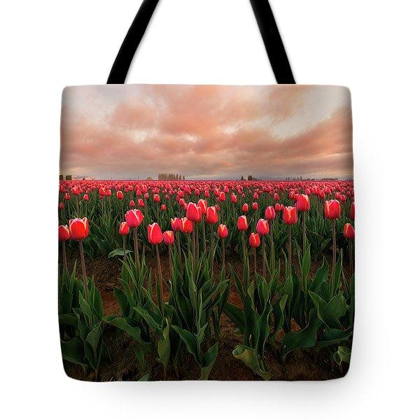 Spring Rainbow Tote Bag