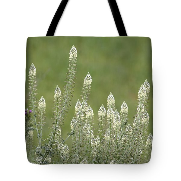 Spring Rockets Tote Bag