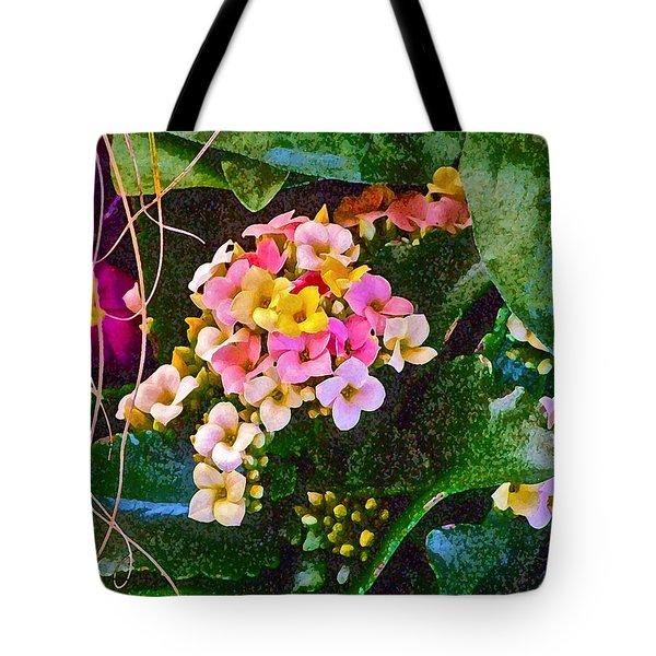 Spring Show 12 Tote Bag