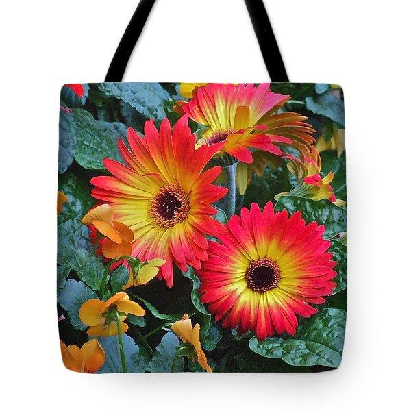 Spring Show 14 Gerbera Daisy 1 Tote Bag